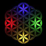 quantum healing practitioners loughton essex uk
